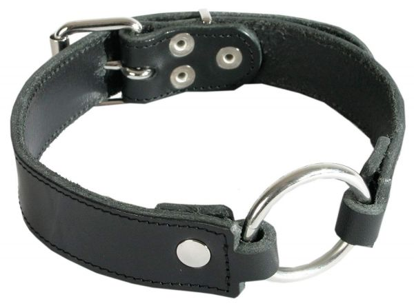 Ledapol Bondage Leder Halsband mit Ring S-L